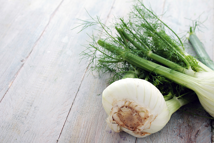 fennel-herb